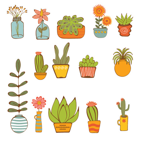 Beautiful set of hand drawn houseplants. vector illustration