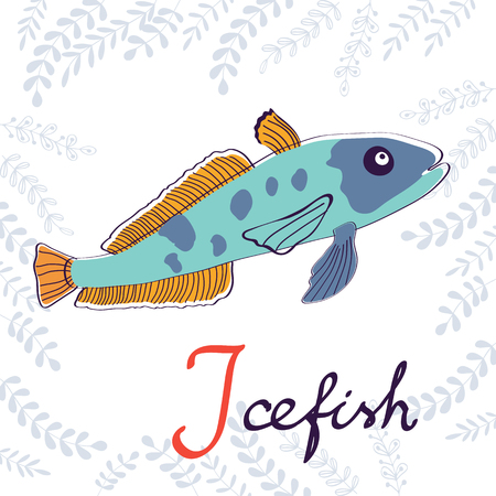 sea urchin: Illustration of I is for Icefish. Vector format