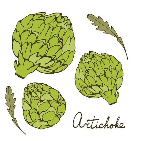 artichoke: Colorful hand drawn card with artichoke. Illustration in vector format