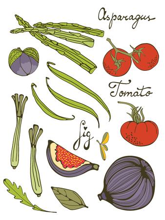 lemon grass: Colorful set of fresh hand drawn fruit and vegetables. Illustration in format
