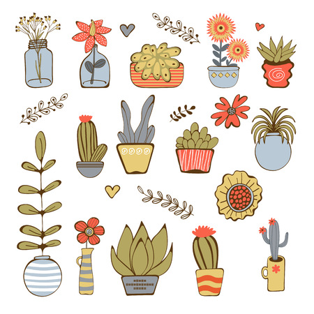 houseplant: Cute hand drawn collection of house plants.Vector illustration