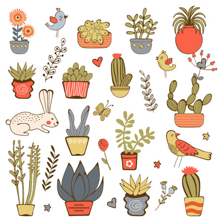 cute house: Cute hand drawn collection of house plants.Vector illustration