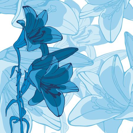 lilly: Elegant illustration of lilly flowers. vector illustration