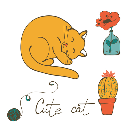 wiskers: Illustration of a cat sleeping , flower in glass vase and cactus. Illustration in vector format Illustration