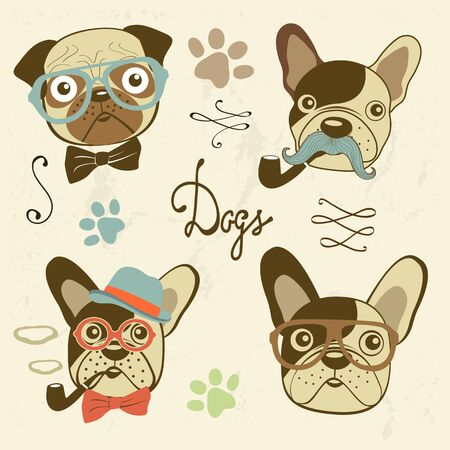 eyeglass: Dogs collection. Colofrul hand drawn illustration in vector format Illustration