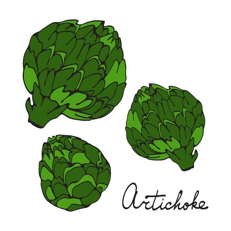 Colorful hand drawn card with artichoke Ilustracja