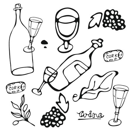 Wine collection. Hand drawn set of graphic elements in vector format