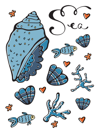 Sea set. Beautiful sea shells collection with hand lettering above. Ideal for cards and invitations.