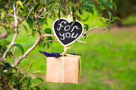 kinfolk: Gift box with lavender twig hanging on a tree branch, for you lettering on clip label, Valentine, wedding, love, romantic concept, blurred grass in the background