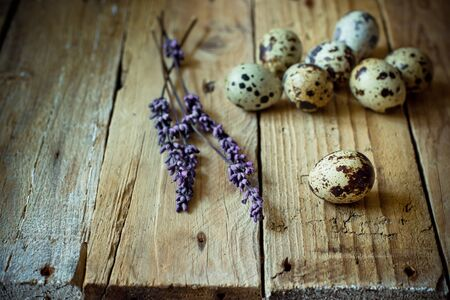 kinfolk: Scattered quail eggs on barn wood with lavender twigs, Easter decoration, simplicity minimalistic concept