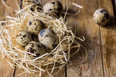 kinfolk: Scattered quail eggs in a straw nest on wood background, kinfolk style, Easter, farming Stock Photo