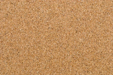 Corkboard - porous abstract background
