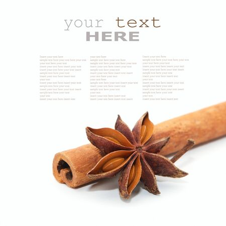 Star anise and cinnamon beer ingredients isolated on white background (with space for text)