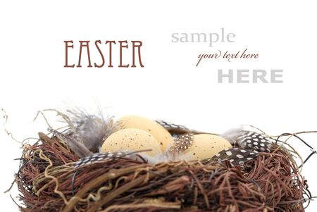 Birds nest with eggs (Easter composition). With sample text