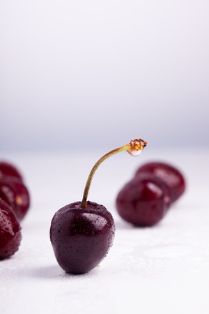 appetising: Close-up of a dark red cherry with droplets of water on it, several cherries are in the background but blurred. Focus is on the foreground.