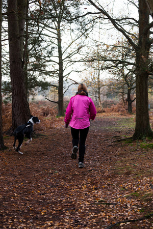 Female jogging in the woods with a black and white Boston Great Dane Puppy photo