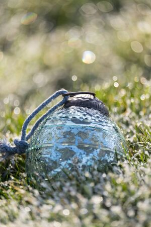 christmas grounds: Christmas bauble in the grass on a cold bright morning with frost and dew on the grass.