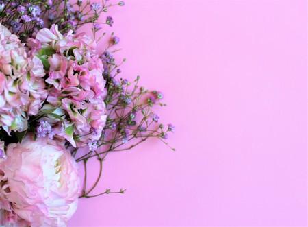 Lichtroze bloemen (Ranunculus) op een roze ondergrond. Achtergrond voor groeten, uitnodigingen, kaarten.