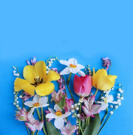 Spring bouquet of tulips and daffodils on a blue background. Delicate flower arrangement. Background for cards, greetings, invitations.