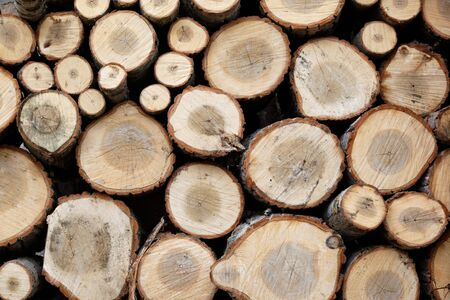 Background of dry chopped firewood logs stacked up on top of each other in a pile Stock Photo