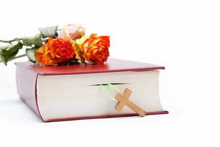 bible flower: Book  Holy Bible on white background. Stock Photo
