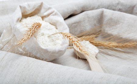 Flour and wheat grain on sackcloth photo