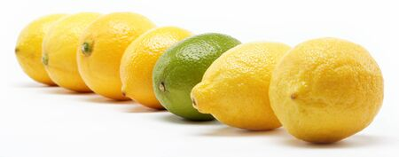 tropical fruits isolated on a white background. Stock Photo - 15050487