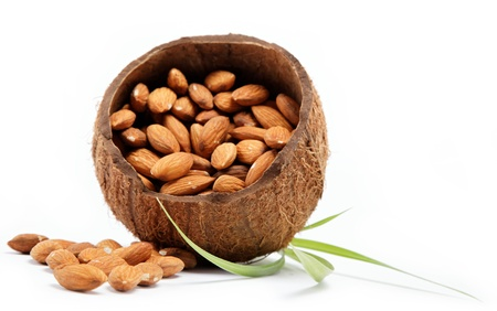Almond nuts in the shell of the coconut  Stock Photo