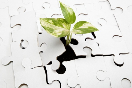 sustain: Green sprout from the earth makes its way through the puzzle. Stock Photo