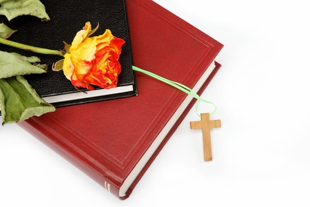bible flower: Two books  Holy Bible on white background. Stock Photo