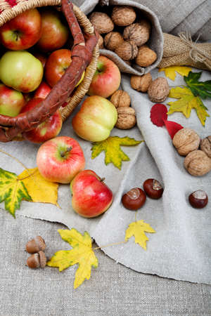 Autumn theme  Apples and walnuts on linen canvas  photo