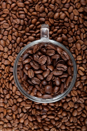 Glass coffee cup on the background of coffee beans. photo
