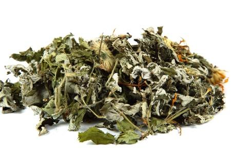 藥用植物。草藥。收集藥材的茶。 版權商用圖片