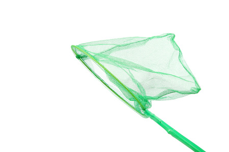 Green insect net isolated on a white background. photo