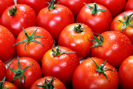 Fresh tomato fruits as a background.