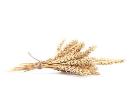 Covone di spighe di grano isolato su sfondo bianco. Archivio Fotografico - 44192938