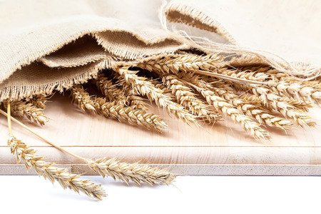 sheaf: Sheaf of wheat ears in a cloth on a wooden board isolated on white background.