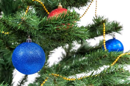 balls decorated: Christmas tree decorated with blue and red balls.