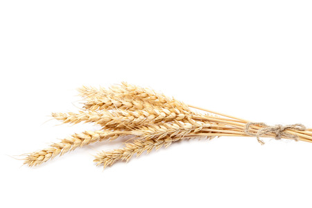 wheat: Sheaf of wheat ears isolated on white background.