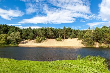 lake beach: The river in a pine forest with a sandy beach.