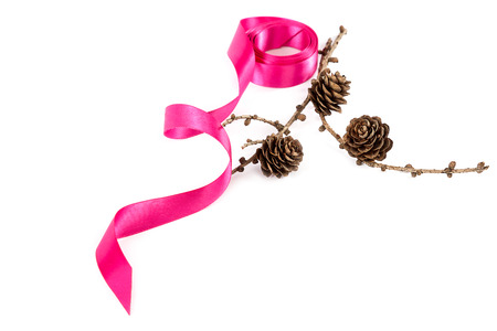 pine cones: Holiday pink ribbon and a branch of pine tree with pine cones isolated on white background.