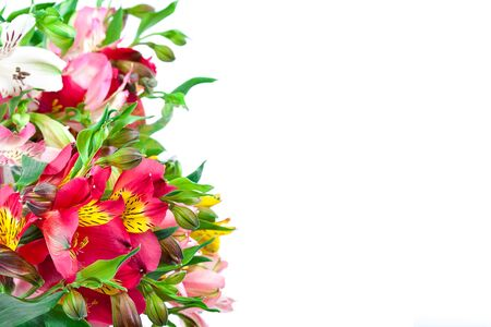 lily: Bouquet of pink, yellow and white lilies isolated on a white background.