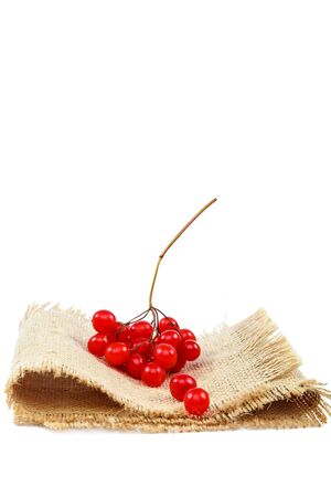Viburnum berries on a cloth isolated on white background.