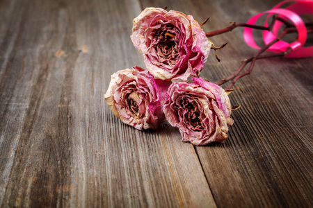 Dried flowers roses on a wooden background.