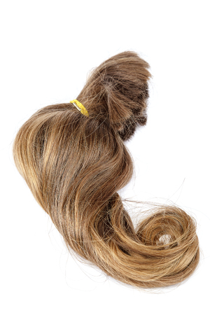 blond streaks: Curl of blond hair is isolated on a white background.