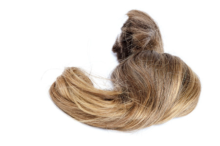 Curl of blond hair is isolated on a white background.