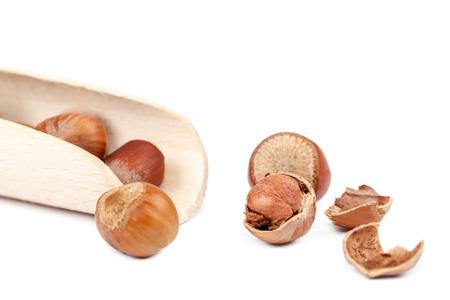 Hazelnut on a isolated on white background. Stok Fotoğraf