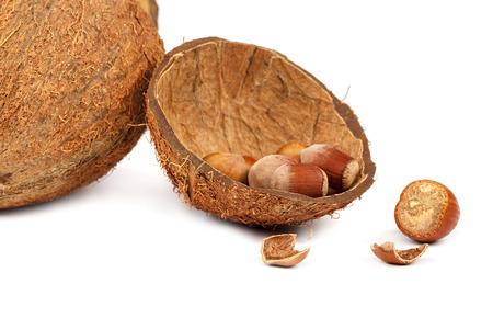 Coconut and hazelnut isolated on white background.
