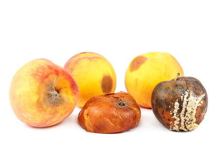 Fruits of an apple and peach with rot isolated on white background. Stock Photo