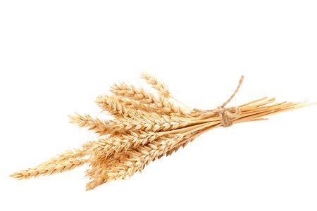 Gerbe d'épis de blé isolé sur fond blanc. Banque d'images